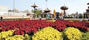 Flora Exhibition